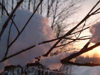 Winterfoto_2020_05