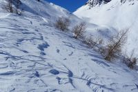 Winterfoto_2020_11