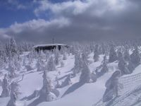 Winterfoto_2020_14