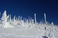 Winterfoto_2020_18